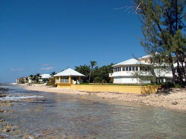 Poinsettia Seven Mile Beach Grand Cayman B W I